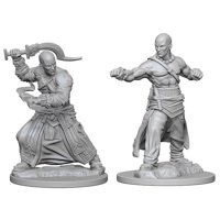 Pathfinder: Deep Cuts Miniatures - Human Male Monk