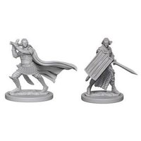 Pathfinder: Deep Cuts Miniatures - Elf Male Paladin
