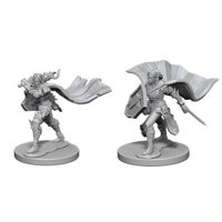 Pathfinder: Deep Cuts Miniatures - Elf Female Paladin