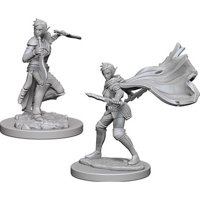 Pathfinder: Deep Cuts Miniatures - Elf Female Rogue