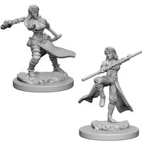 D&D: Nolzur's Marvelous Miniatures - Human Female Monk