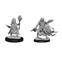 Pathfinder: Deep Cuts Miniatures - Evil Wizards