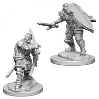 D&D: Nolzur's Marvelous Miniatures - Human Male Paladin