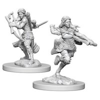 D&D: Nolzur's Marvelous Miniatures - Air Genasi Female Rogue