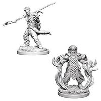 D&D: Nolzur's Marvelous Miniatures - Human Male Druid