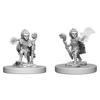 Pathfinder: Deep Cuts Miniatures - Gnome Male Druid