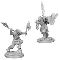 D&D: Nolzur's Marvelous Miniatures - Dragonborn Female Fighter