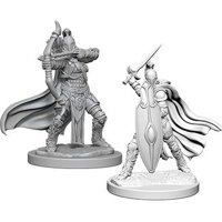 Pathfinder: Deep Cuts Miniatures - Female Knights, Grey Maidens