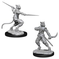 D&D: Nolzur's Marvelous Miniatures - Tabaxi Male Rogue