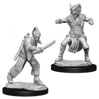 D&D: Nolzur's Marvelous Miniatures - Human Male Monk