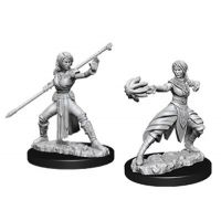 D&D: Nolzur's Marvelous Miniatures - Half-Elf Female Monk