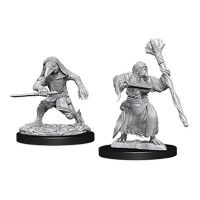 D&D: Nolzur's Marvelous Miniatures - Kenku Adventurers