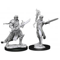 Pathfinder: Deep Cuts Miniatures - Elf Male Magus
